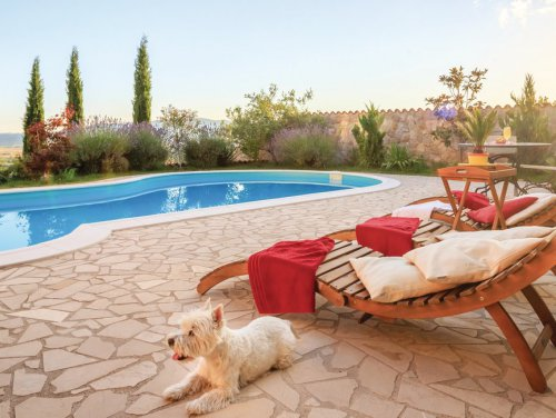 7_1-Pet-friendly-Villas-in-Dalmatia.jpg